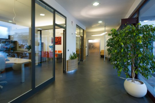 benedetto_offices